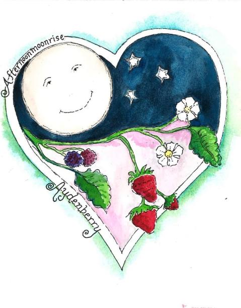 aydenberry logo